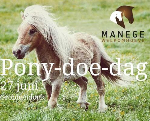 Pony doe dag