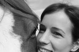 paard close up